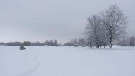 GolfNorth
