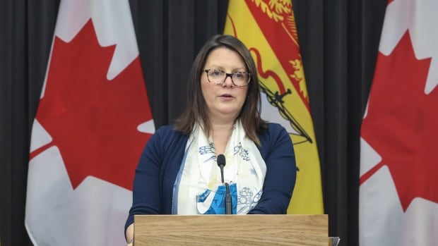 N.B. COVID-19 roundup: Russell, Shephard address test backlogs as 3 new cases reported
