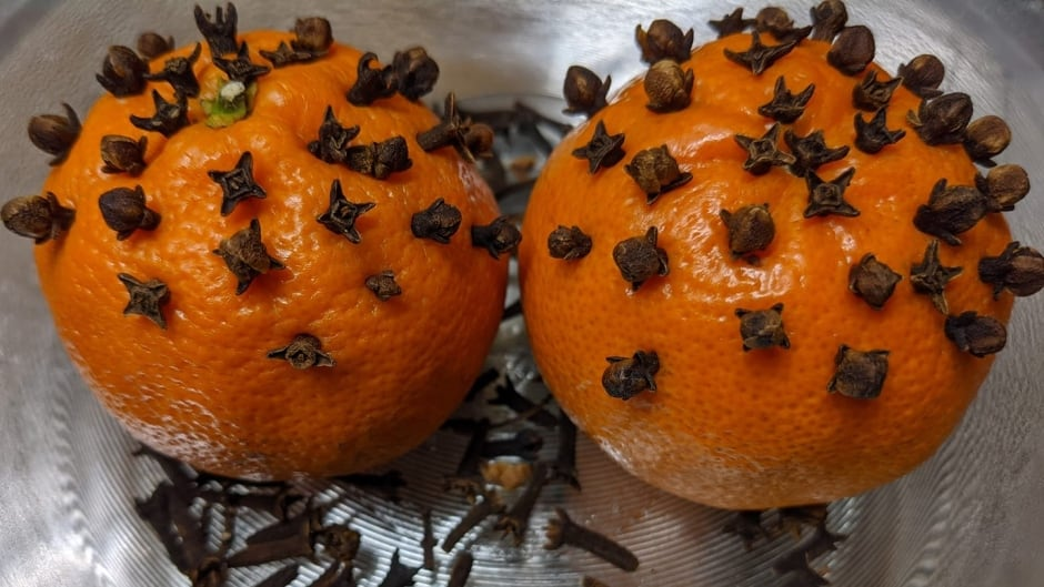 Manitoba Woman Put Cloves In Oranges House Smells Awesome Cbc News