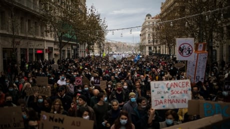 France Law Protests