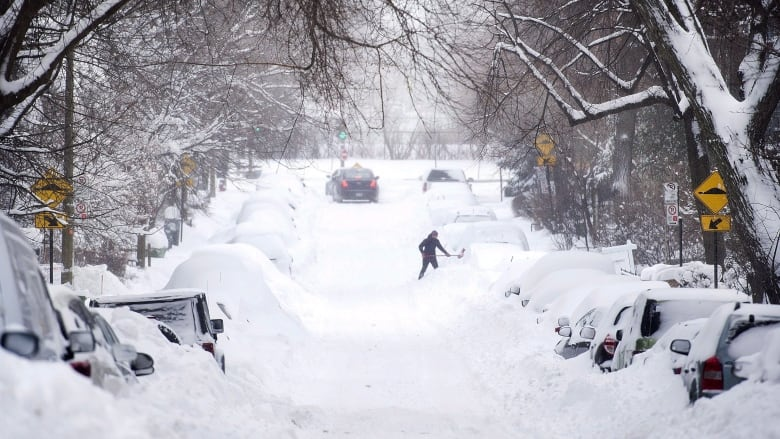 'Significant winter storm' expected in London region, Environment Canada says
