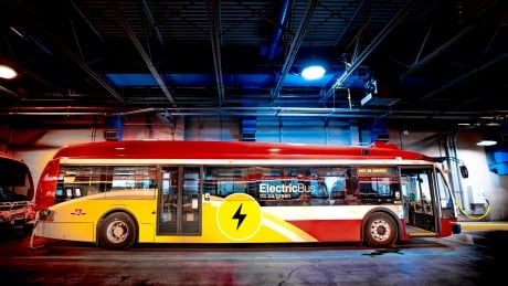 What cities can learn from the biggest battery-powered electric bus fleet in North America