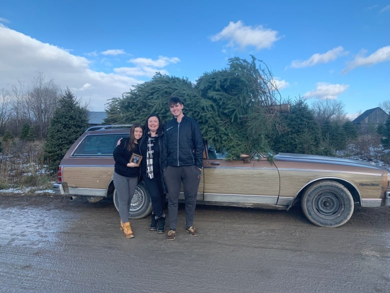 Download Stittsville family goes full Griswold for the holidays ...