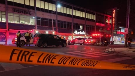 <div>Cyclist, 23, dies after being struck by 2 vehicles in Toronto's west end</div>