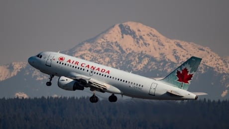 Passenger refunds part of Ottawa's financial relief deal with Air Canada:...