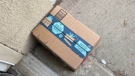 Hamilton police lay 56 charges and arrest 3 people after hunt for porch pirates