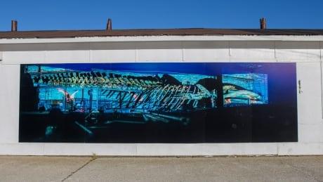 Trout River blue whale artwork