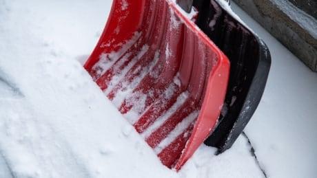 Snowstorm stox
