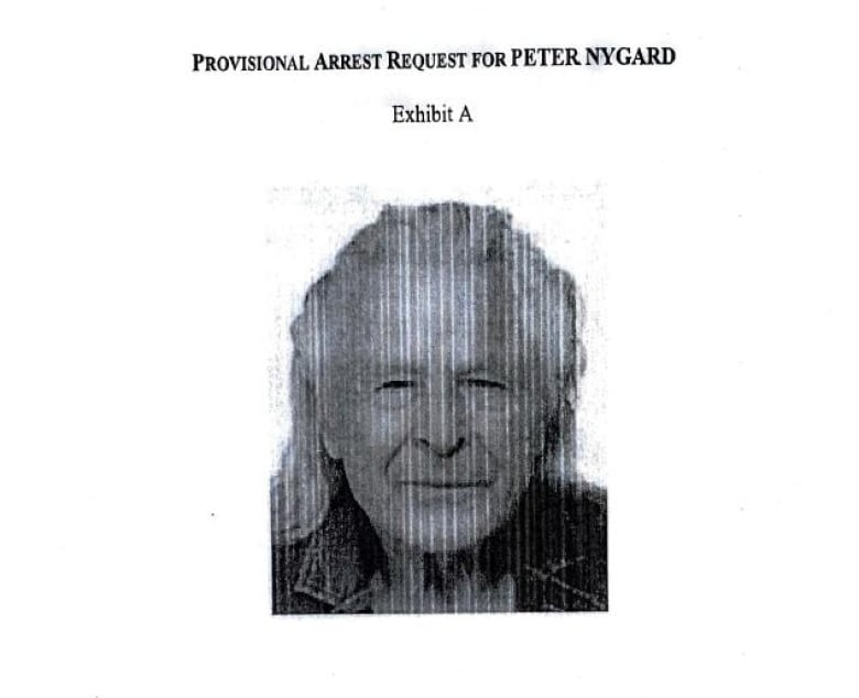 photo of peter nygard in court docs