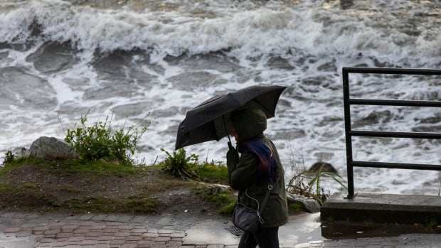 Wind warnings in place for parts of coastal B.C. as 'intense' weather system rolls in   CBC News