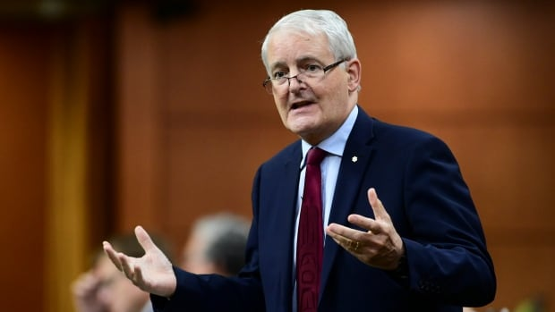 Garneau won't rule out invoking Emergencies Act to limit pandemic travel | CBC News