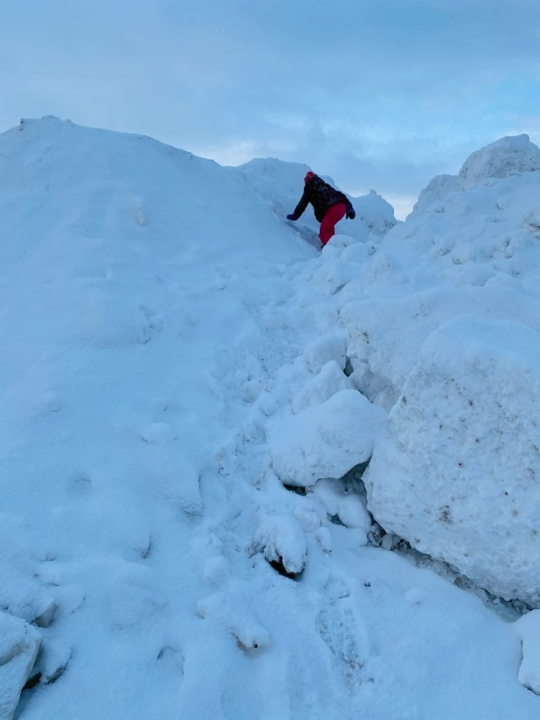 Piles of dirty snow Really Are a Canadian Child's kingdom thumbnail