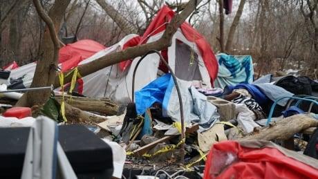 Dismantled homeless encampment