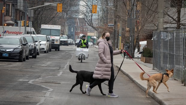 Stay-at-home order doesn't give police power to enter homes, pull over drivers, stop pedestrians | CBC News