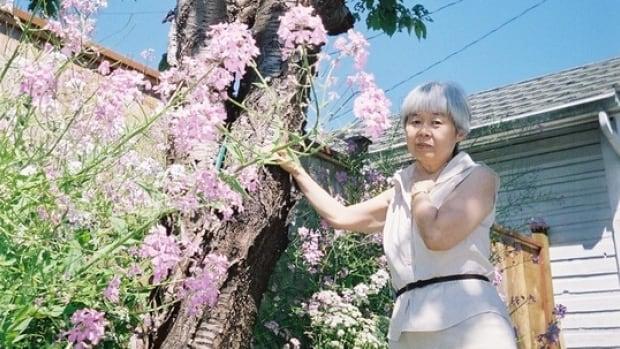 B.C. tree that inspired award-winning author Joy Kogawa damaged by windstorm