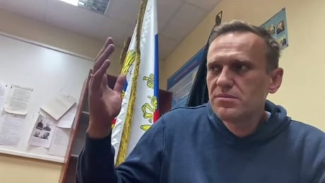 Alexei Navalny's return to Russia solidifies opposition leader's role as 'anti-Putin'