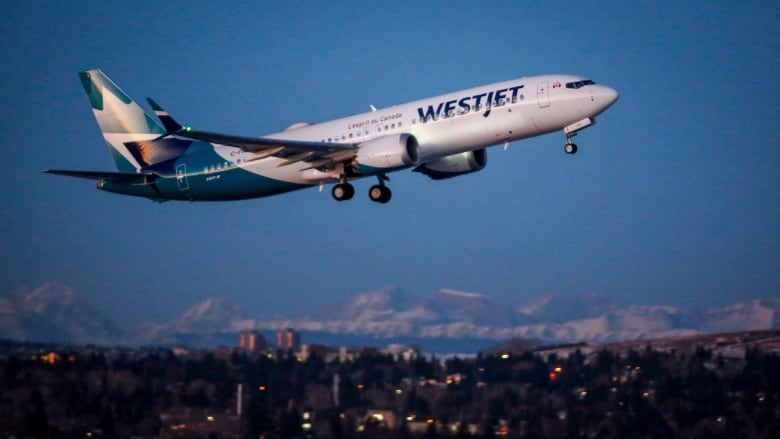 WestJet cancels Boeing 737 MAX flight moments before takeoff | Venture