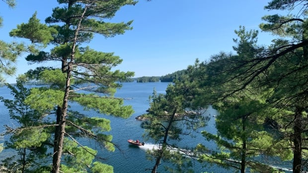 'This was the way to do it'— towns, First Nations, logging companies join up to manage Temagami forest