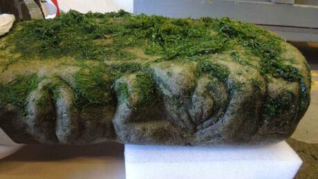 Indigenous Artifact Found 20210127