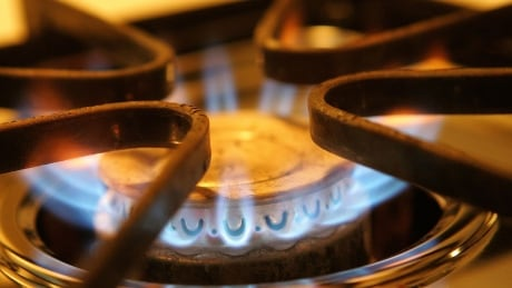natural gas stove element