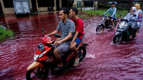 INDONESIA-ENVIRONMENT/