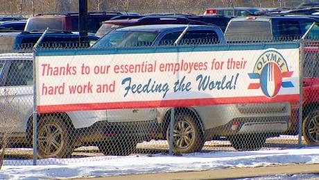 Olymel pork plant red deer workers covid-19 outbreak