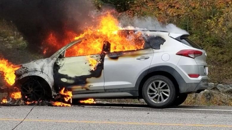 캐나다 방송에서 현대와 기아 엔진 화재 문제점 집중 보도돼 hyundai tuscon on fire