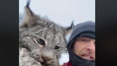 Lynx with Chris Paulson