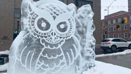 owl ice sculpture downtown Kitchener