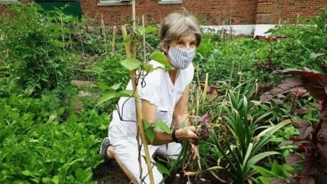Spring hasn't sprung yet — but community gardens are in full swing