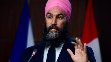 NDP promises to wipe out a lot of student debt as parties prepare for election