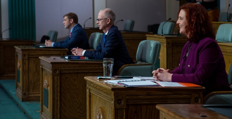 COVID-19 and N.L.'s election results probably killed the idea of a spring federal election