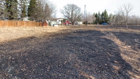 Grass fire on Charleswood Road