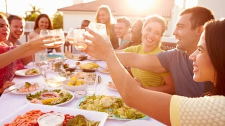 Shutterstock - medium file Summer Outdoor Meal