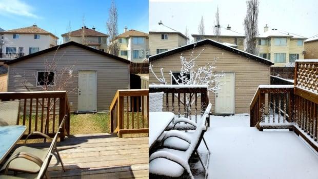 Calgary's springtime snowfall drops temperature to 0 C | CBC News
