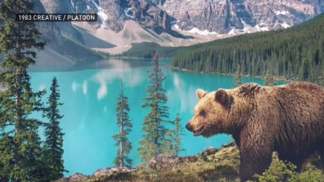 Musician records natural sounds from 7 continents for Earth Day