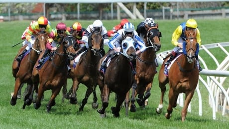 2000 Guineas Stakes - Horse Racing on CBC: DAY 2