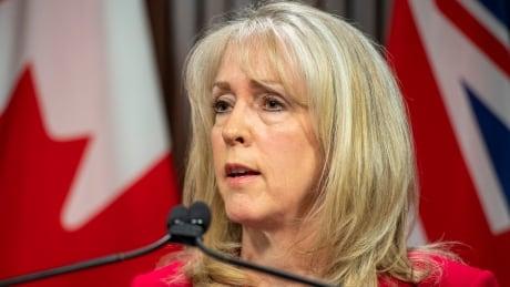 Merrilee Fullerton Ontario long-term care minister COVID-19