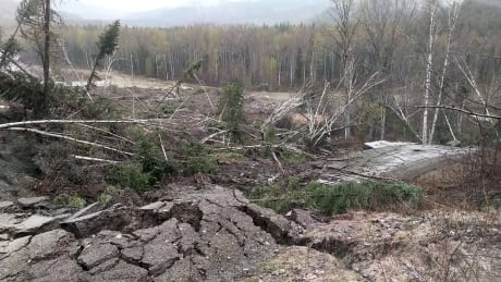 Climate change makes landslides a growing danger for B.C. Interior, experts say