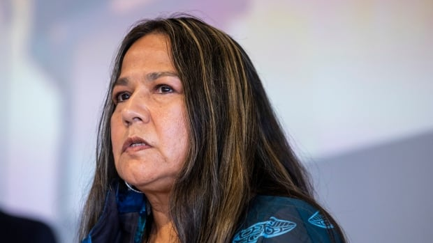 Indigenous leaders call for investigation into RCMP on Vancouver Island after recent shootings | CBC News