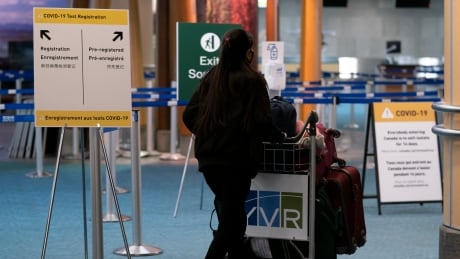 Domestic flights continued from COVID-19 hot spots as cases surged