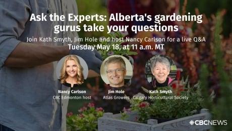 Ask an Expert gardening