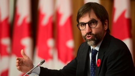 Heritage minister stands by controversial Bill C-10, urges MPs to pass it 'quickly'
