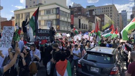 Montreal Palestinian Demonstration Israel Gaza Saturday May 15