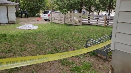 Man identified as victim of fatal stabbing in north London Saturday