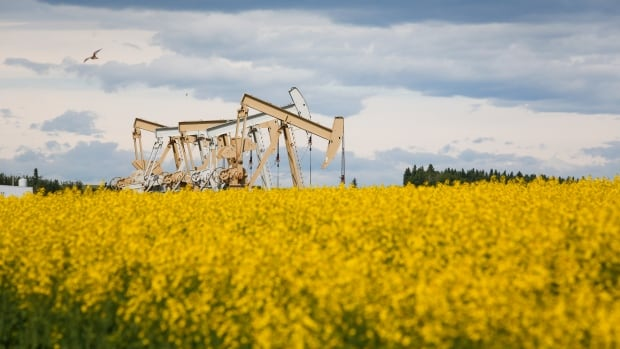 Canadian farmers have spring in their step from strongest commodity prices in years