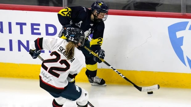 Minnesota defeats New Hampshire to claim U.S. Secret Cup in St. Louis
