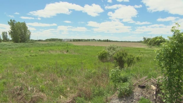 Councillor feels misled by plans for new Barrhaven warehouse | CBC News
