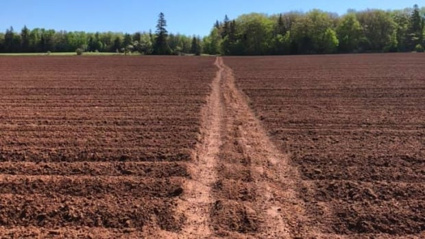 Annoyed Island farmer issues reminder after ATVs damage fields