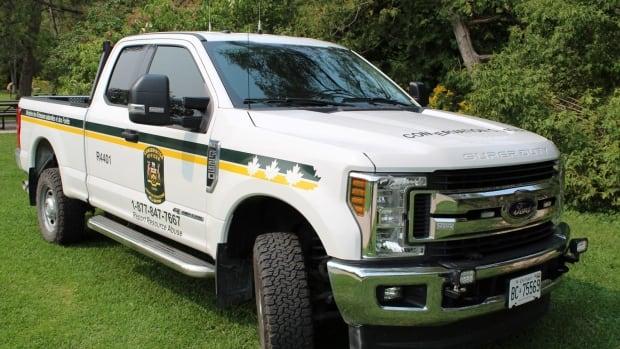 Oshawa man fined $7,500 for hunting violations north of Thunder Bay